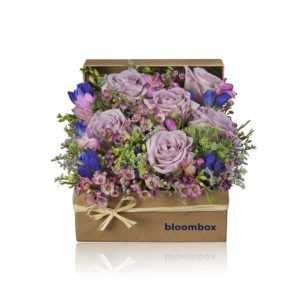 Bloom Boxes