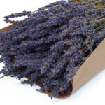 Natural Dry Lavender Bunch zoom